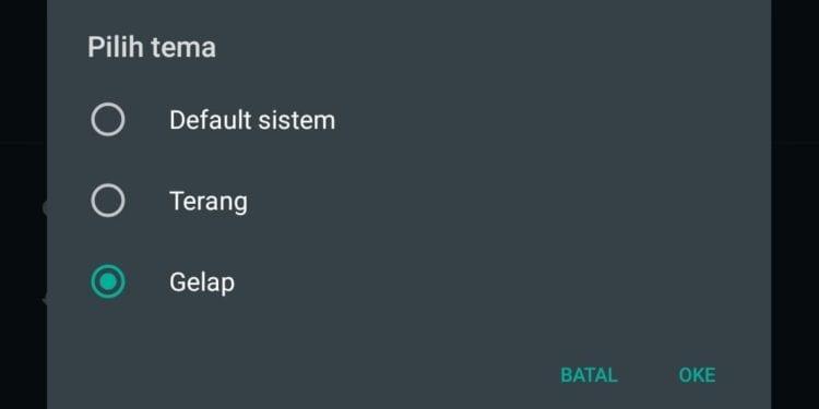 Cara Aktifkan Mode Gelap di WhatsApp - Menu Pengaturan Tampilan Tema WhatsApp
