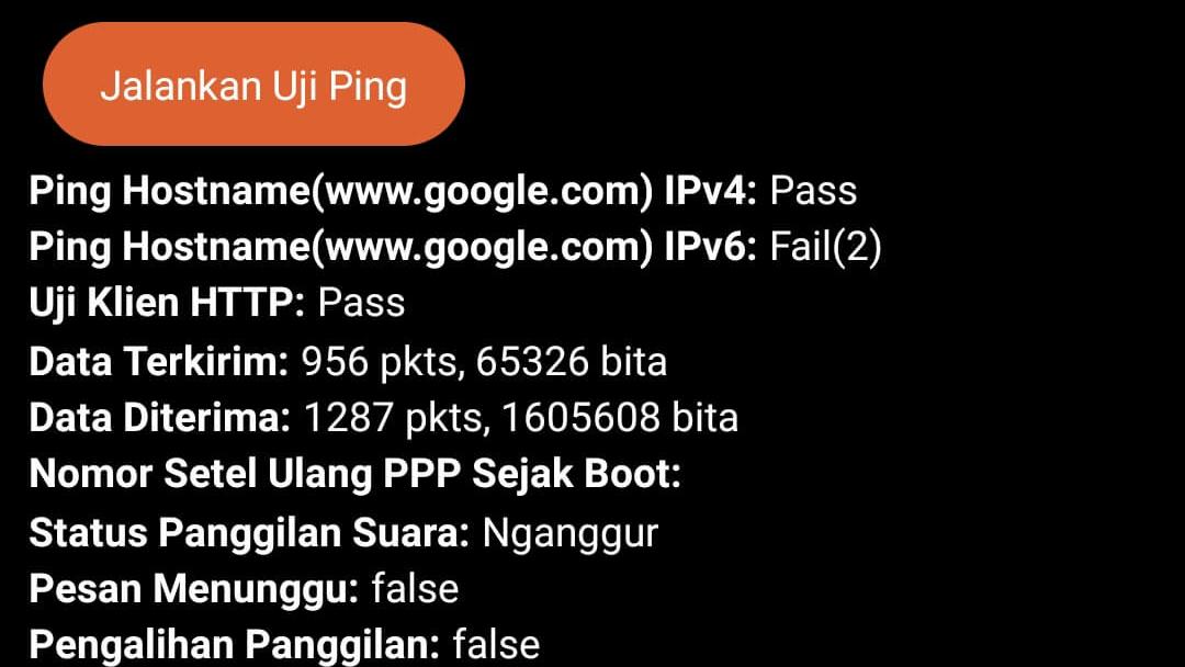 Test Client HTTP pada ASUS ROG Phone 3 ZS661KS